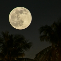 """The """"Blue Moon"""" that is not blue..."""